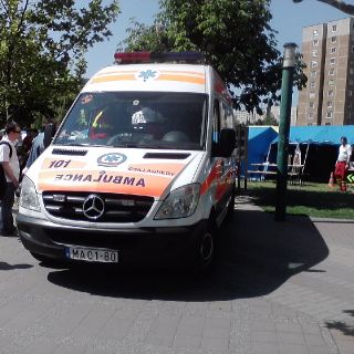 Hungarian emergency service